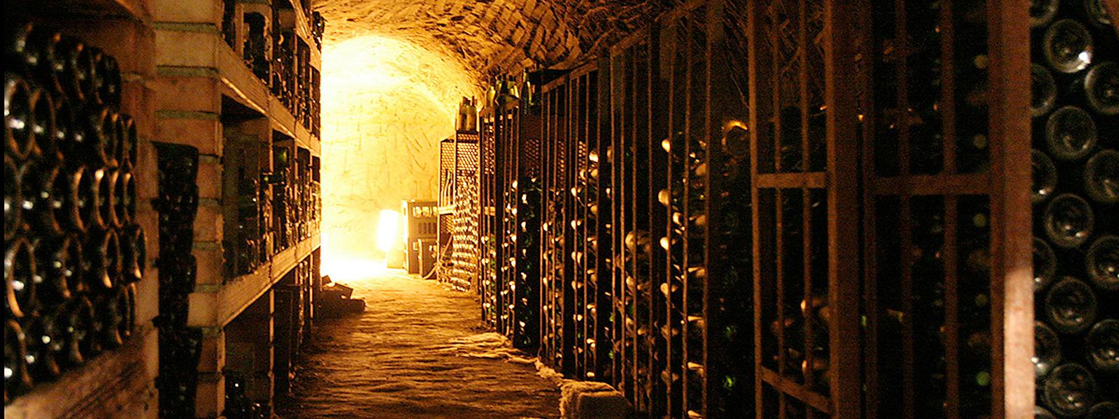 wine-celler